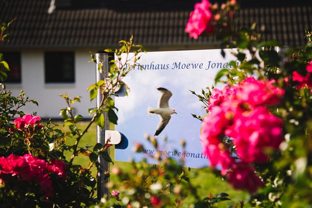 Ferienhaus Möwe Jonathan